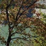 ridracoli-2011-023